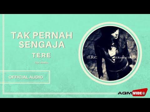 Tere - Tak Pernah Sengaja | Official Audio