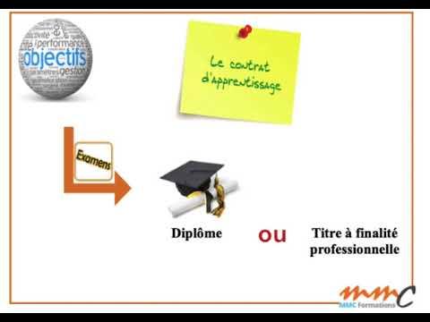 Les Contrats D'apprentissage Et De Professionnalisation