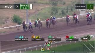 Vidéo de la course PMU PREMIO IMPRECISO