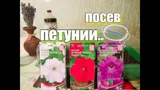 Посев петунии на рассаду. Как и когда сеять?!? (23.02.18) Московская обл.