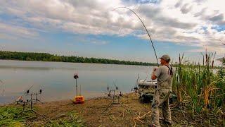 Карпы клюют один за другим, не успеваем наживлять! Рыбалка с ночевкой на реке с корабликом! Часть 1