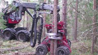 SP 451 LF with multi tree epuipment on Valmet 901.3