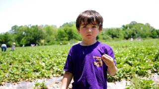 Aric In Strawberry Heaven Thumbnail