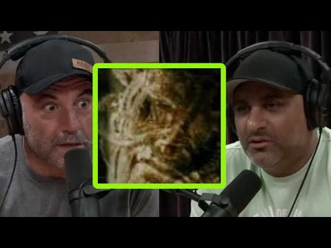 Joe Rogan Gets Into a Deep DMT Discussion With Comedian Russell Peters