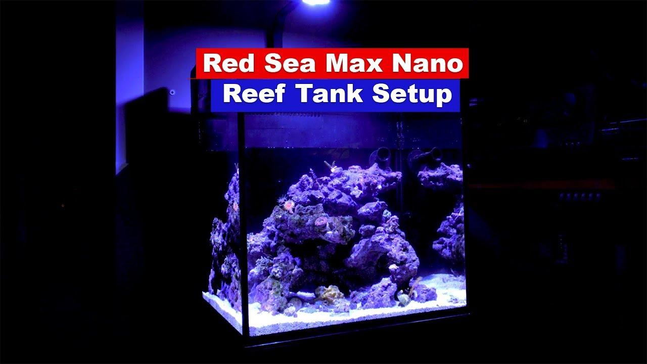 how to setup a saltwater reef rank red sea max nano setup youtube
