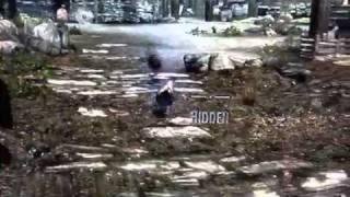 Zombie Chicken in Skyrim