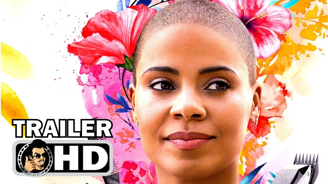 Download NAPPILY EVER AFTER Trailer (2018) Sanaa Lathan Netflix Drama