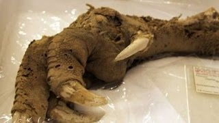 The 7 Scariest Archaeological Discoveries