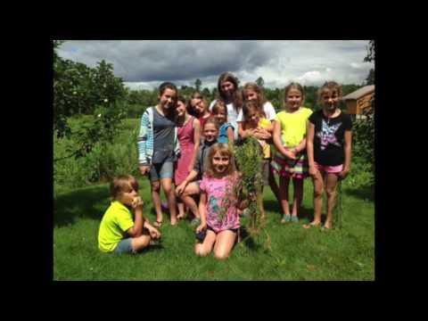 River Arts Summer Camps 2016