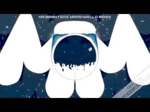 Mr.brightside Marshmello Remix