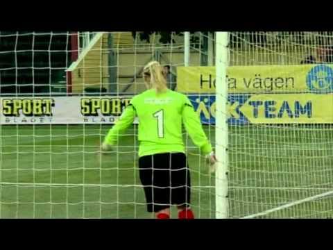 LdB FC Malmö Swedish Champions 2013 - All the goals