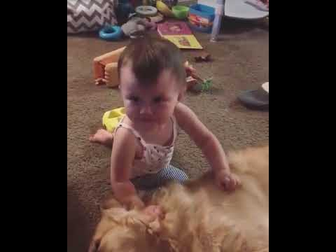 Mike and Mindy - Super CUTE!! Tot Plays with Dog