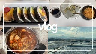 vlog)평범한 대학생 겨울방학 나기(음식해먹고,기차여…