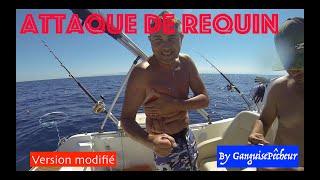 Attaque de Requin en Méditerranée ( Version Non censurée !)