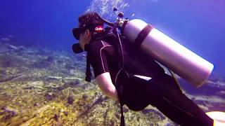 Punta Cana Dive 2017 - Dominican Republic
