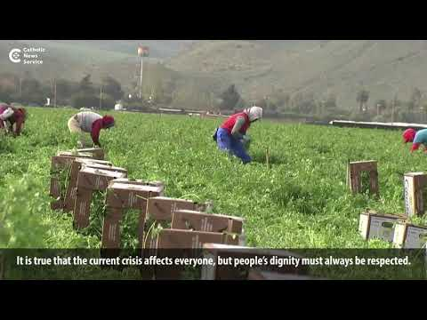 Pope prays for farmworkers amid pandemic