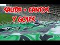 Frente Radical Verdiblanco | Deportivo cali vs Equidad 2-0 Liga Aguila 8-FEB-2015