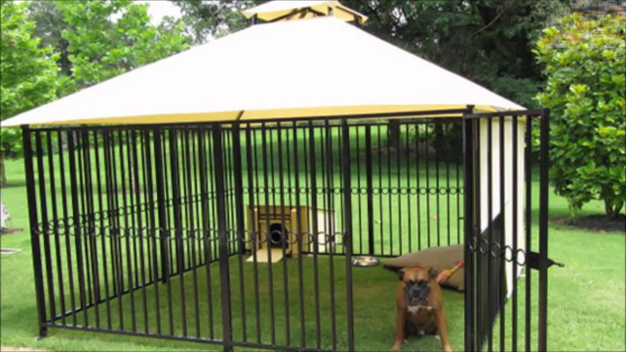 Dog Kennels Dog Runs Dog Kennel Dog Run Youtube