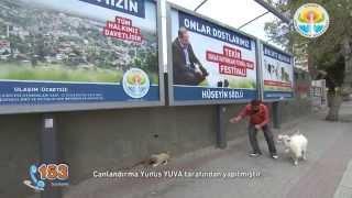 Adana Büyükşehir Belediyesi Sağlık Daire Başkanlığı