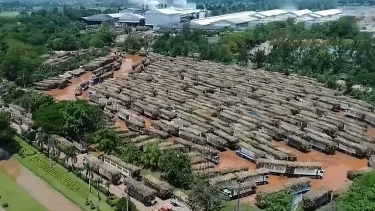 รถอ้อยทะลัก! ชาวไร่อ้อยโล่ง 2 โรงงานน้ำตาลเมืองอุดรฯ  ยอมยืดเวลาปิดหีบถึง10พ.ค.นี้ - YouTube