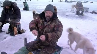 Рыбалка на озере Ловозеро