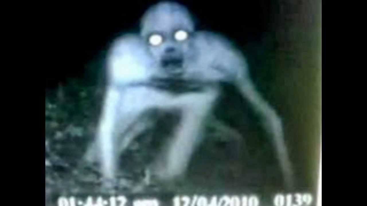 ghost and demon sightings youtube