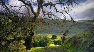 Силиконовая Долина: вид с горы в парке Сан-Хосе