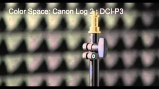 Canon EOS C300  Mark II Footage - 4K