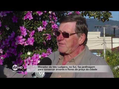Morador de São Ludgero faz jardinagem para conservar árvores e flores de praça da cidade