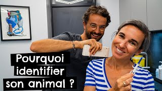 Pourquoi identifier son animal ?