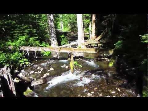 H.J. Andrews Experimental Forest