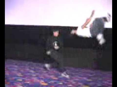 kungfu thai lan.