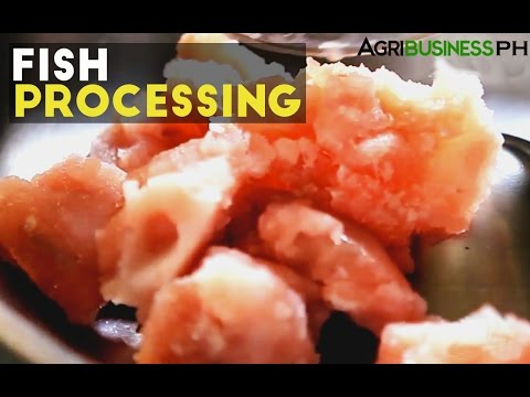 Value added products from fish processing #AgriculturePhilippines