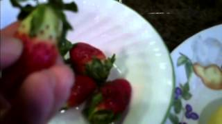Strawberry Delight Dessert