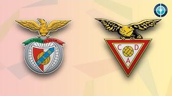 Benfica am Rande der Niederlage | Benfica Lissabon - CD Aves