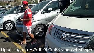 Авторынок Ереван цены и машины 10-11.08 Авто из Армении Toyota Alphard Часть1