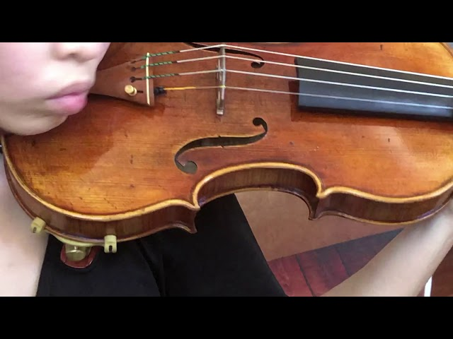 Ifstrings Master Build deluxe Wood #353 Guarneri del Gesu 1740