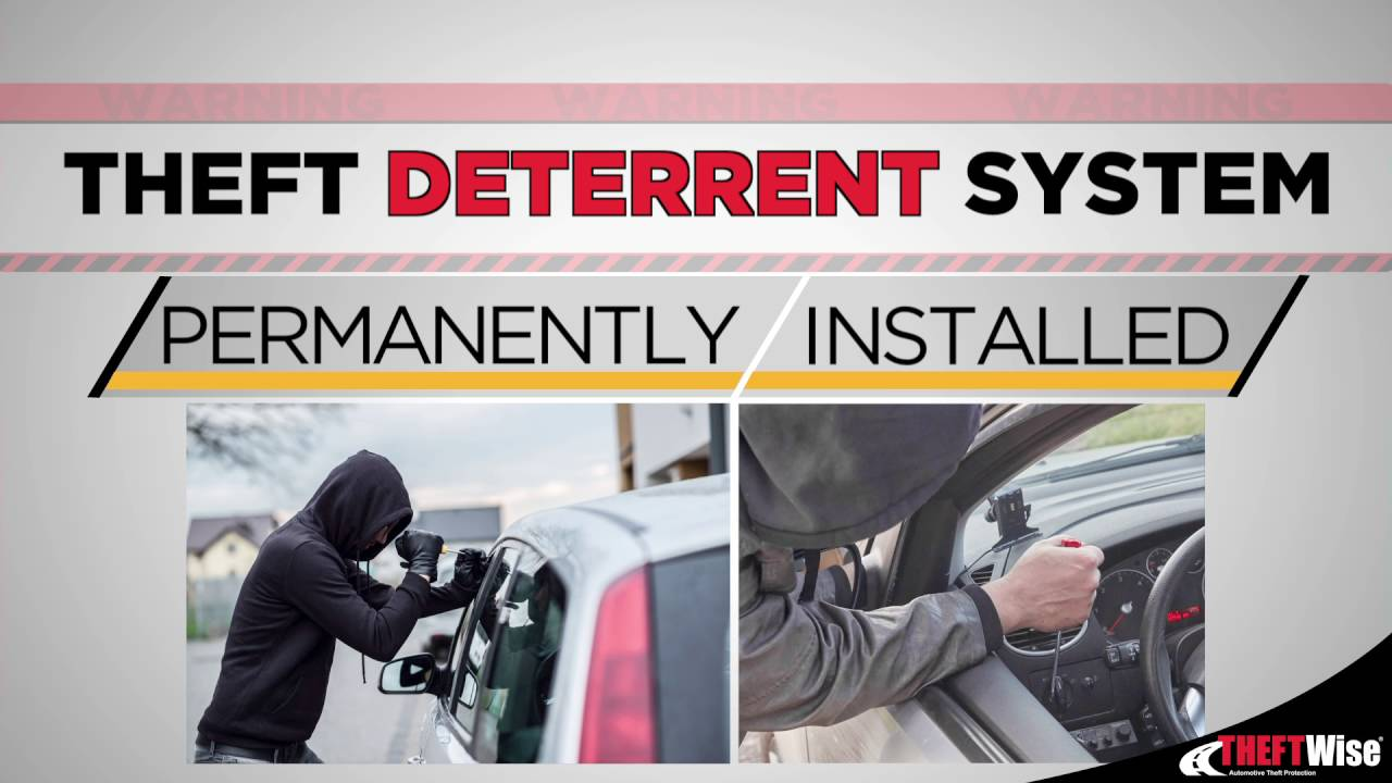 Theft Deterrent System: THEFTWise