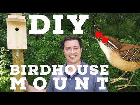 How to Mount a Bird House on a Sturdy Wooden Pole