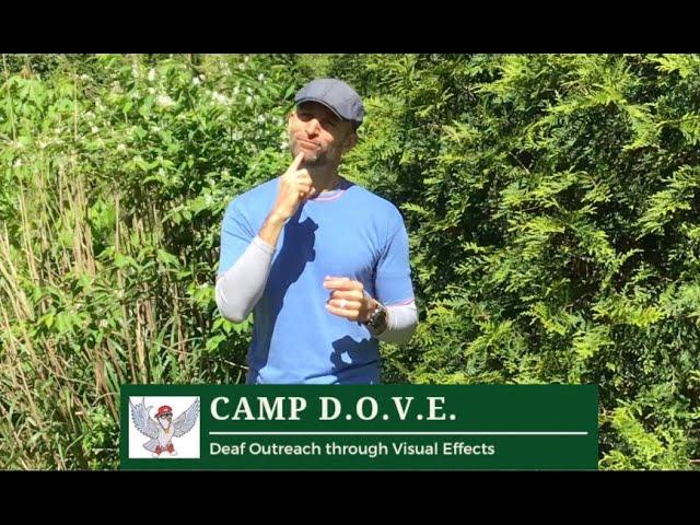 Camp Dove Update 1