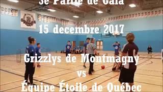 Partie de Gala - Équipe Étoile vs Grizzlys de Montmagny