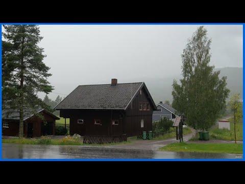 Звуки дождя и грозы | Для сна ,отдыха, изучения и медитации [Атмосфера грома и дождя]
