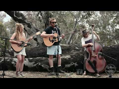 Helena Pop - Little Thunder The Wonder Car - Live On A Log