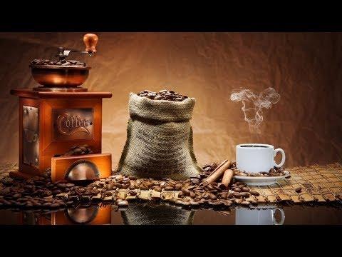 Почему от кофе болит желудок почему