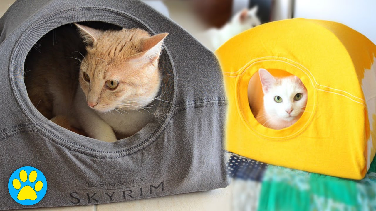 Does This Pin Work? | DIY Cat Tent - YouTube