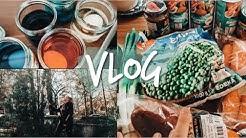 ALLTAGSVLOG | kochen, backen und Sport | Hanna Marie