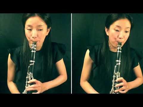 Konzertstuck 1 F-Moll Op 113 Clarinette