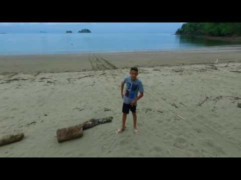 playa pajaros HD