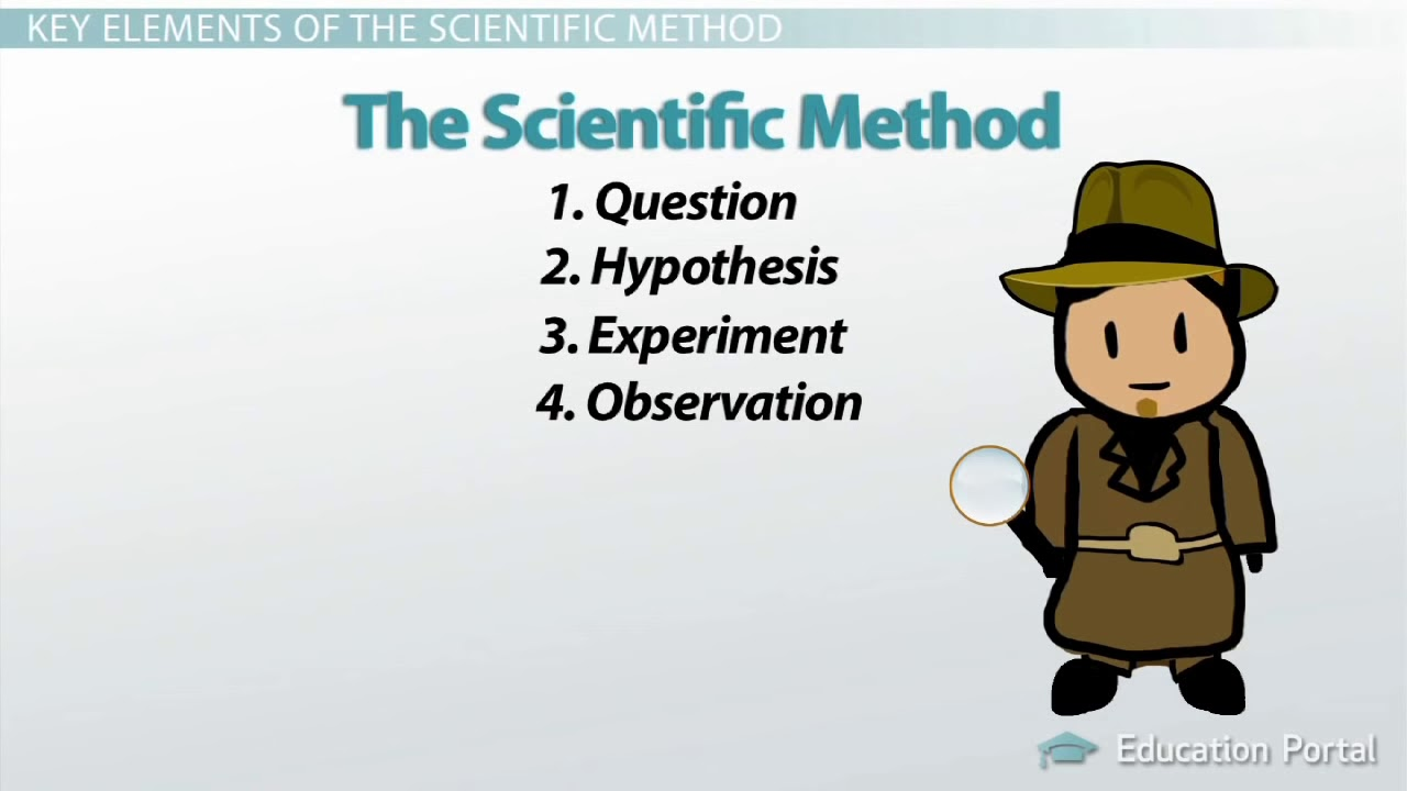 The Scientific Method Steps Terms And Examples YouTube