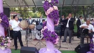 Toshkent guruhi + 998983079900